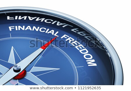 3D rendered illustration of the word Freedom Stock photo © Spectral