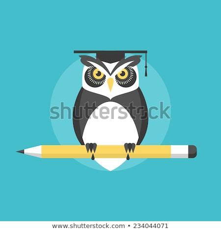 University graduation vector concept metaphor. Stock photo © RAStudio