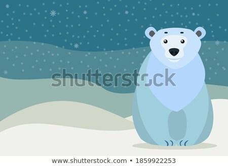 雪 キャプション 極地の 白 クマ ストックフォト © robuart