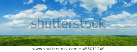 White clouds on blue sky and bright in the reservoir Stock photo © nuttakit