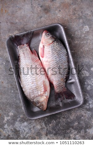 packed fresh fish Stock photo © smithore