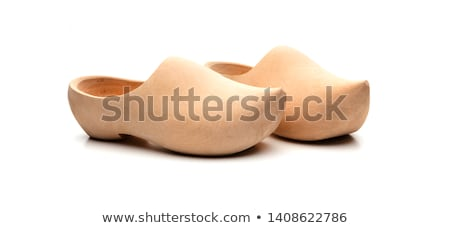 Wooden clog Stock photo © ivonnewierink