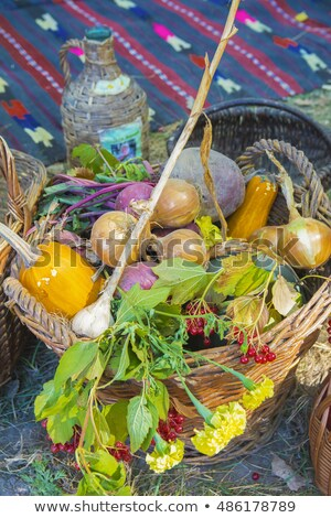 fair-haired belle with basket Stock photo © photography33