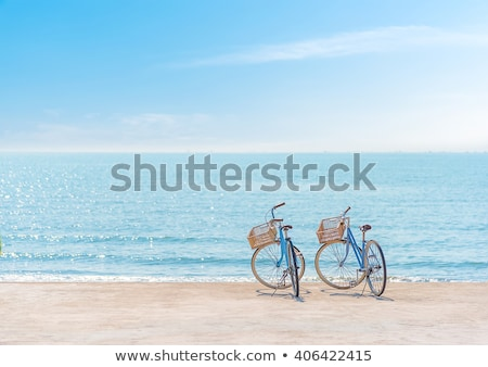 Bicycle on the Atlantic Ocean coast Stock photo © ajlber