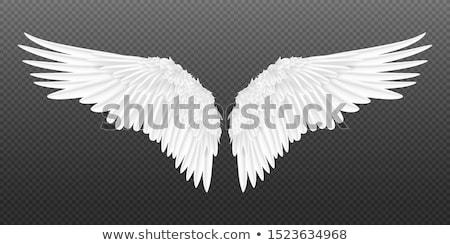 Stock photo: angel #2