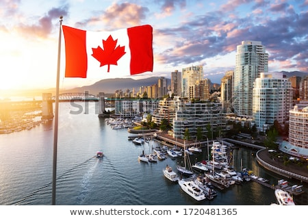 hamis · patak · marina · este · Vancouver · brit - stock fotó © fotomine