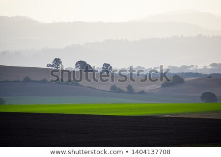 Hazy Plowed Field & Hills at Sunset Stock photo © eldadcarin