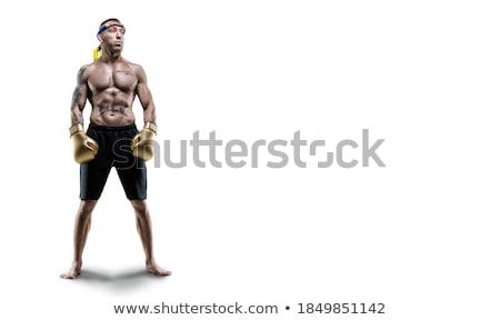 muay · thai · boksör · kadın · hazır · kadın · spor - stok fotoğraf © darkkong