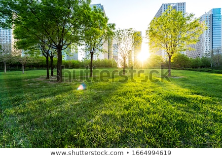 buildings on green landscape stock photo © zzve