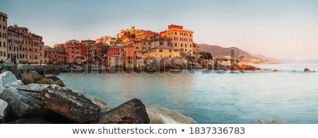 Balık tutma köy İtalya renkli evler Stok fotoğraf © faabi
