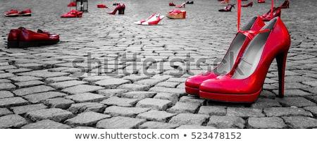 насос · обуви · кожа · изолированный · белый · моде - Сток-фото © michaklootwijk