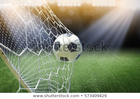 Football or soccer ball on a green lawn Stock photo © nuiiko