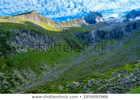 Alpine Creek on a Summer Day Stock photo © wildnerdpix