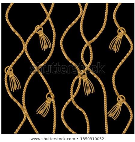 Rope Fringe Stock photo © emattil
