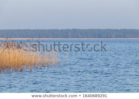 Zonsondergang kust oostzee Zweden wolken landschap Stockfoto © olandsfokus