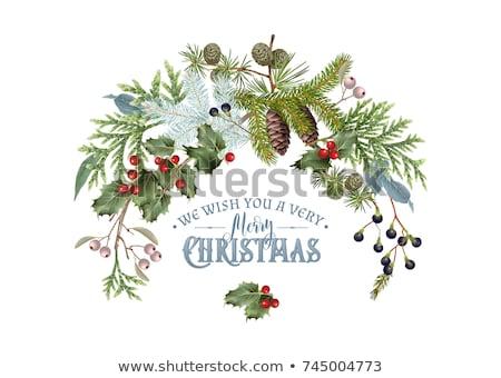 Decoration pine cone Christmas Market Stock photo © w20er
