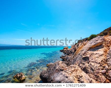 tenger · portré · kő · szabadság · sziget · béke - stock fotó © Dserra1