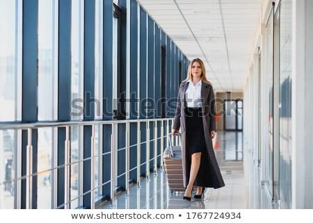 üzletasszony · bőrönd · fiatal · izolált · fehér · nő - stock fotó © kurhan