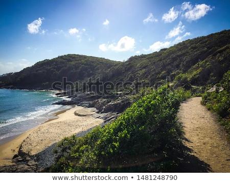 Lopen natuurlijke oefening brunette schoonheid wandelen Stockfoto © lithian