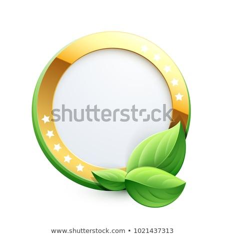 çevre dostu altın vektör ikon dizayn yaprak Stok fotoğraf © rizwanali3d