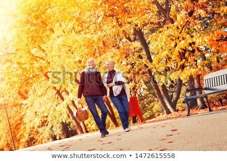 stary · staruszka · koszyka · jesienny · lasu · drzewo - zdjęcia stock © Paha_L