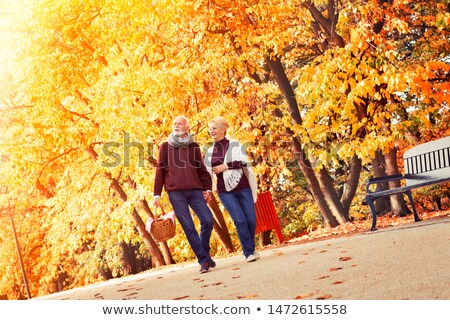 vieillard · vieille · femme · panier · forêt · arbre - photo stock © Paha_L