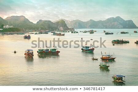 Сток-фото: рыбы · лодка · рай · пляж · Ямайка · воды