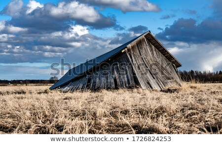 opuszczony · stodoła · starych · wiek · zaniedbanie · wiosną - zdjęcia stock © tawng