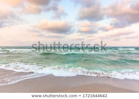 Golden Shoreline Stock photo © ca2hill