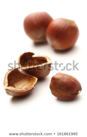empty hazelnut shell Stock photo © Digifoodstock