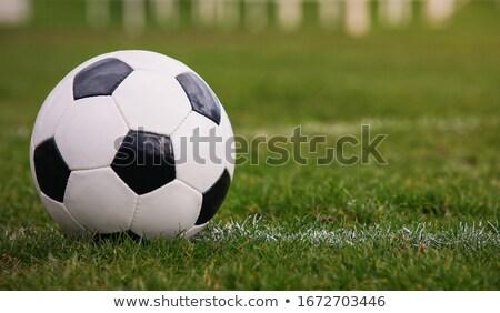 Soccer ball on white marking line Stock photo © wavebreak_media