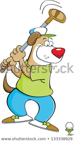 Desenho animado cão jogador de golfe ilustração sorridente jogar Foto stock © tiKkraf69