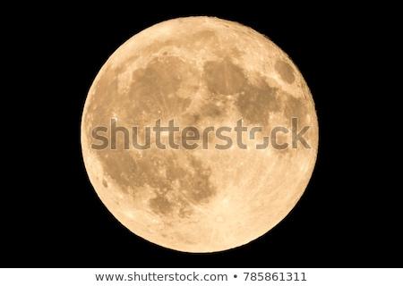 Dolunay örnek gökyüzü ay sanat Stok fotoğraf © bluering