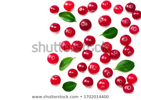 Cranberries branch with leaves, top view, paths Stock photo © maxsol7