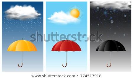 Photo stock: Trois · différent · saisons · illustration · nuages · paysage