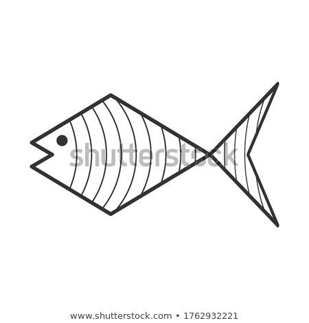 Sziluett szín skicc verzió hal illusztráció Stock fotó © bluering