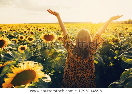 woman holding sunflowers in warm sunlight stock photo © lovleah
