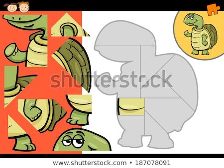 Oyun karikatür kaplumbağa örnek Stok fotoğraf © izakowski