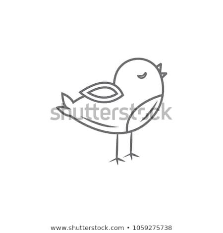 Pequeno pássaro ícone animal isolado Foto stock © Imaagio