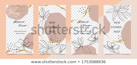 abstrato · folheto · projeto · escritório · globo · laranja - foto stock © pathakdesigner