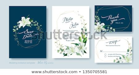 lily frame Stock photo © tanais