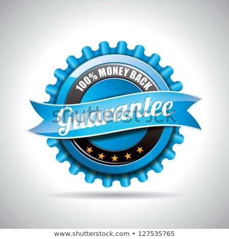 Vektör garanti etiketler örnek parlak dizayn Stok fotoğraf © articular