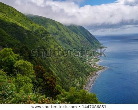 Barco abandonado ilha estrada madeira paisagem Foto stock © dinozzaver