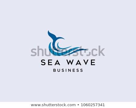 spray · fale · rock · morza · ocean · surfowania - zdjęcia stock © fouroaks