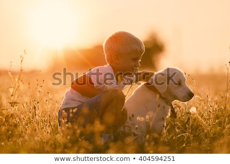 children with puppy at sunset stock photo © adrenalina