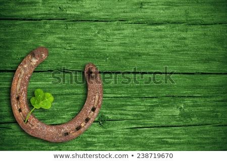 dourado · quadro · verde · trevo · folhas · preto - foto stock © timurock