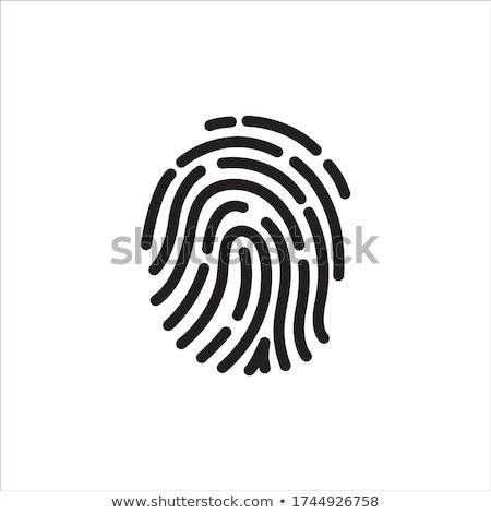 Sicurezza scansione icona design lucchetto lente di ingrandimento Foto d'archivio © WaD