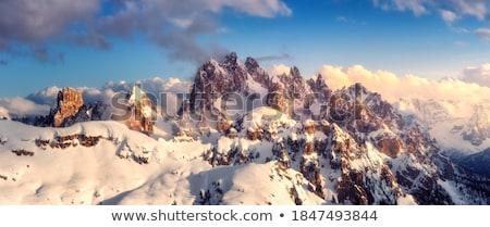 горные · Top · снега · облака · деревья - Сток-фото © kotenko