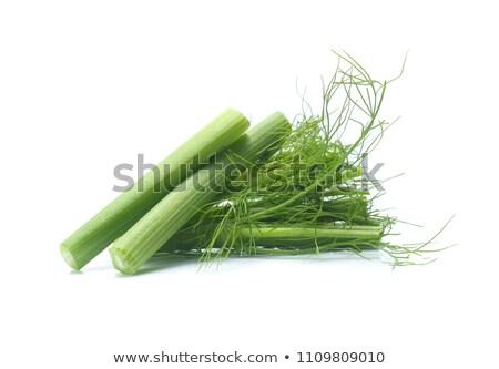 Stock fotó: Friss · édeskömény · levelek · egészséges · fehér · háttér · organikus