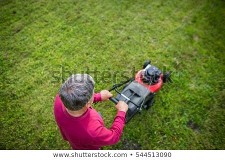 Senior man in his garden - shot from above Stock photo © lightpoet